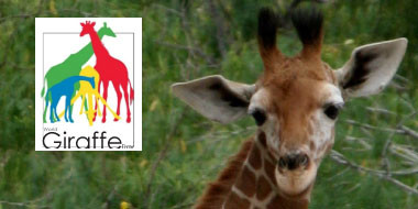 event_featured_giraffeday