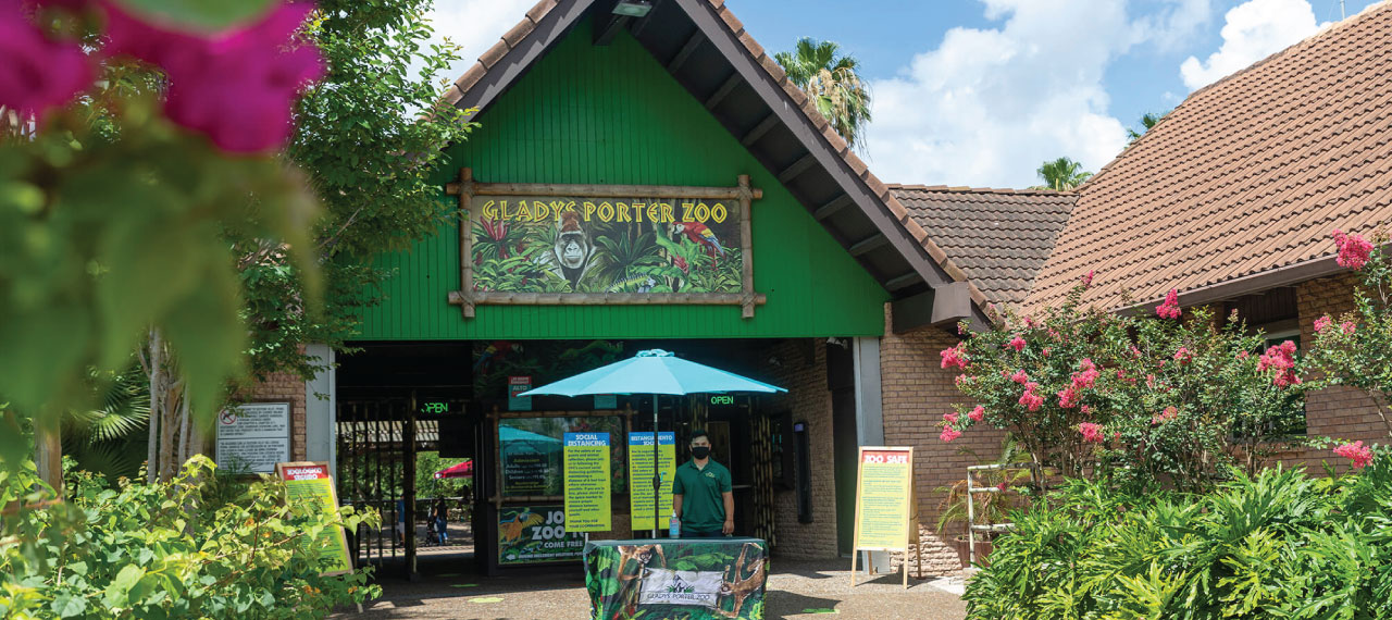 Zoo Reopening